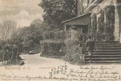 Taras-pałacowy.-Stan-z-przełomu-XIX-i-XX-wieku.